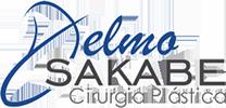 delmo-sakabe-logo