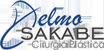 Logo Delmo Sakabe